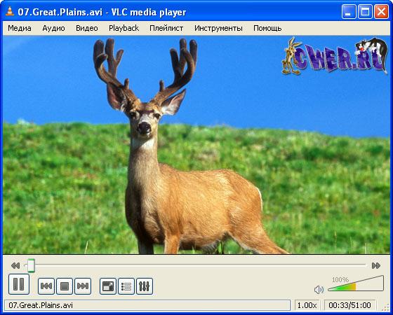 VLC Media Player Portable 1.0.0