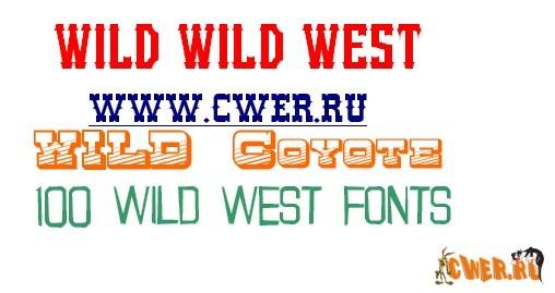 http://www.cwer.ru/files/u243724/0805/2008-05-18_015912.jpg