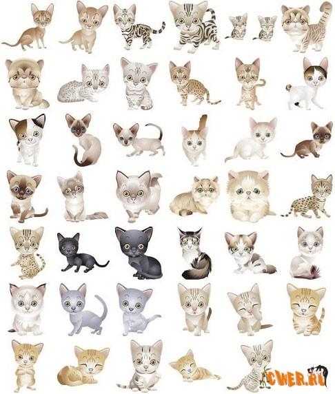 http://www.cwer.ru/files/u5/December07/cats.jpg