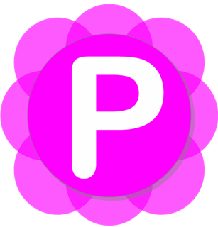 Pamela for Skype Basic 4.7.0.102