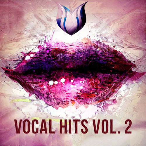 Vocal Hits Vol.2