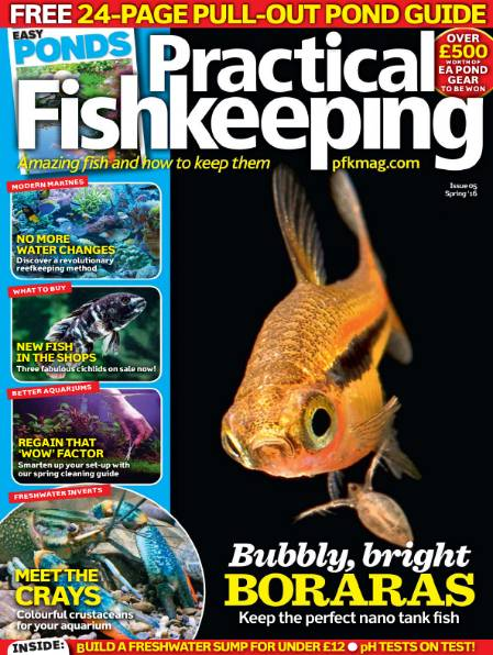 Practical Fishkeeping (Spring 2016)
